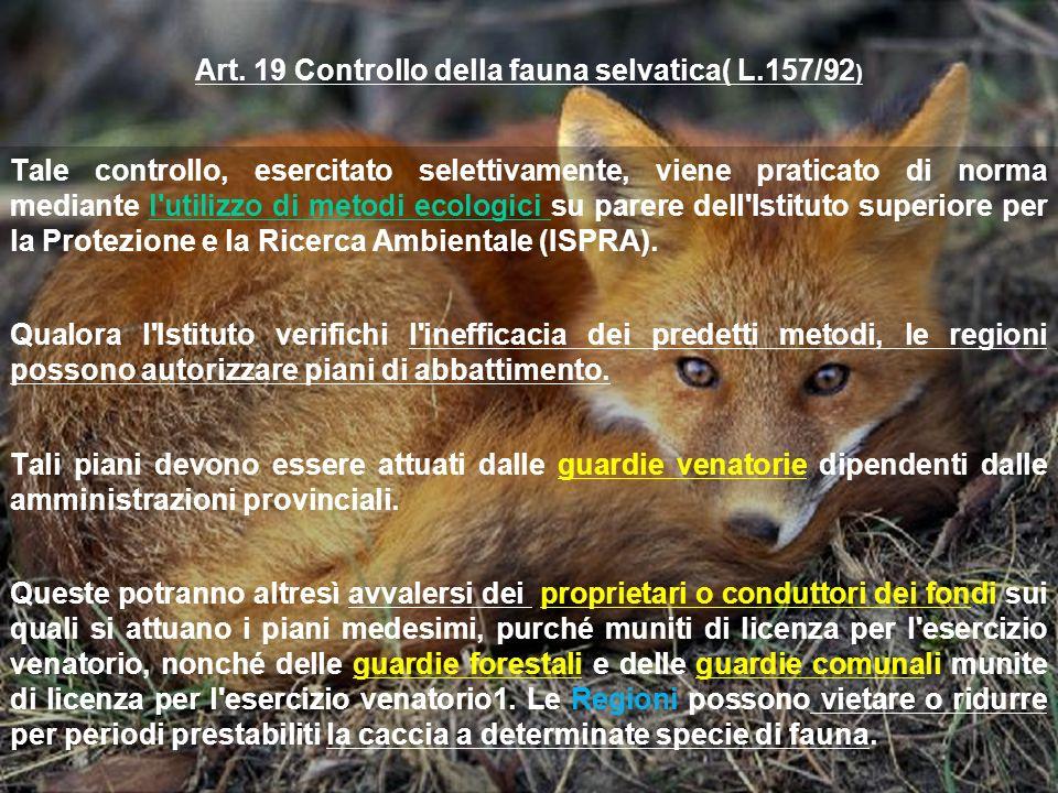 Art. 19 Controllo della fauna selvatica( L.157/92)