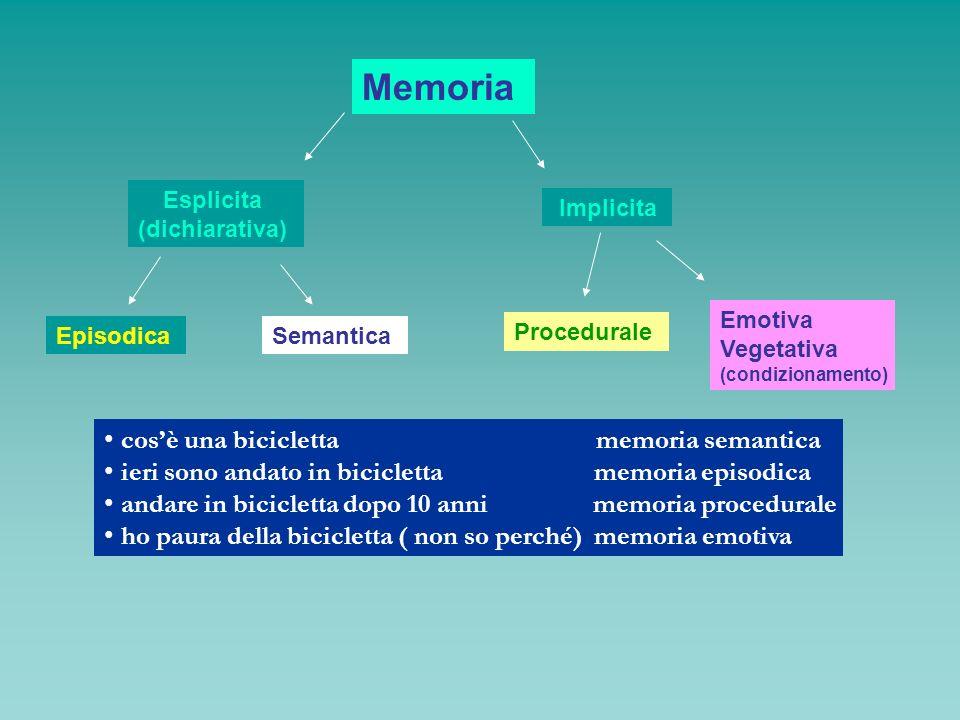 Memoria cos'è una bicicletta memoria semantica