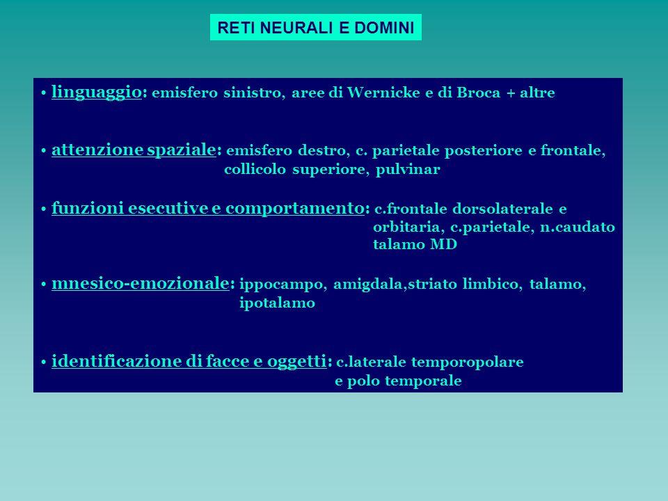 linguaggio: emisfero sinistro, aree di Wernicke e di Broca + altre