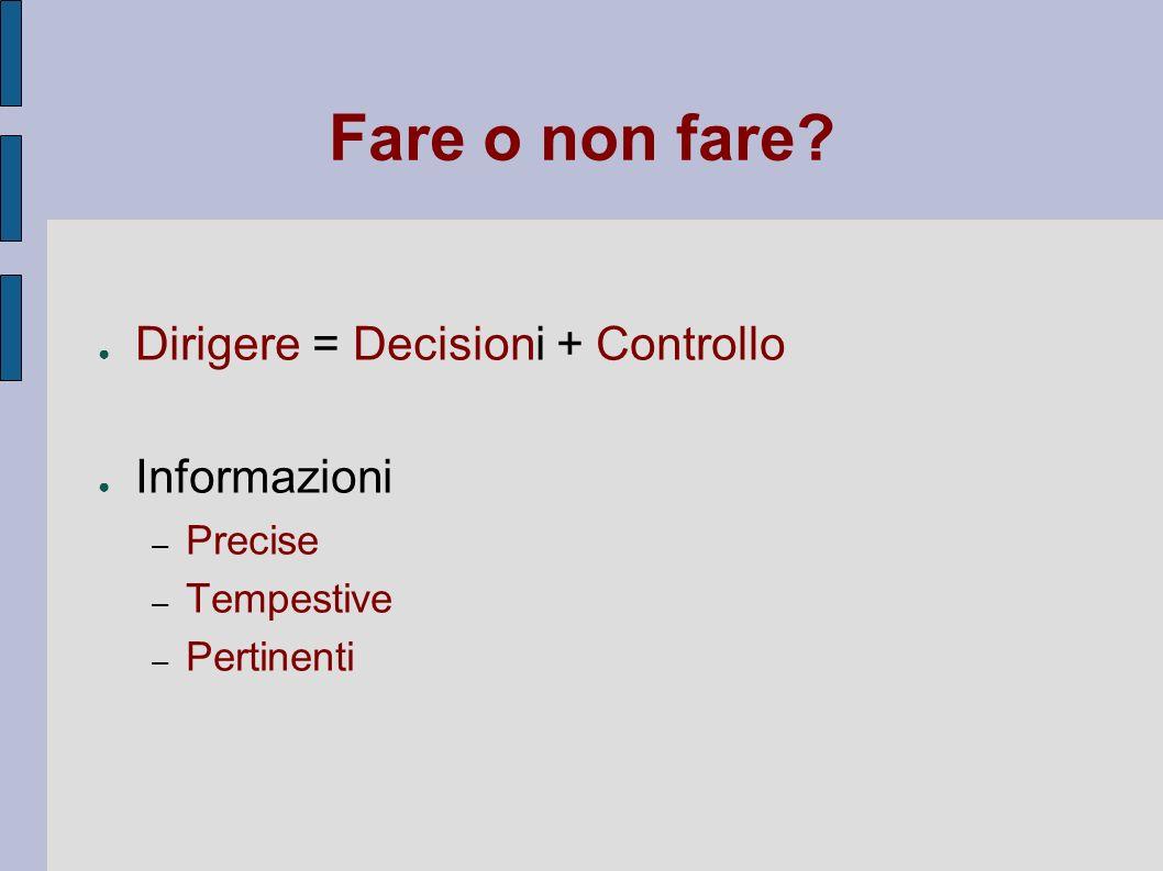 Fare o non fare Dirigere = Decisioni + Controllo Informazioni Precise