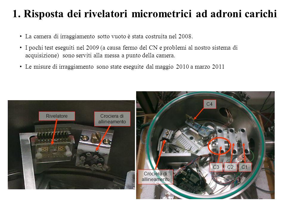 Risposta dei rivelatori micrometrici ad adroni carichi