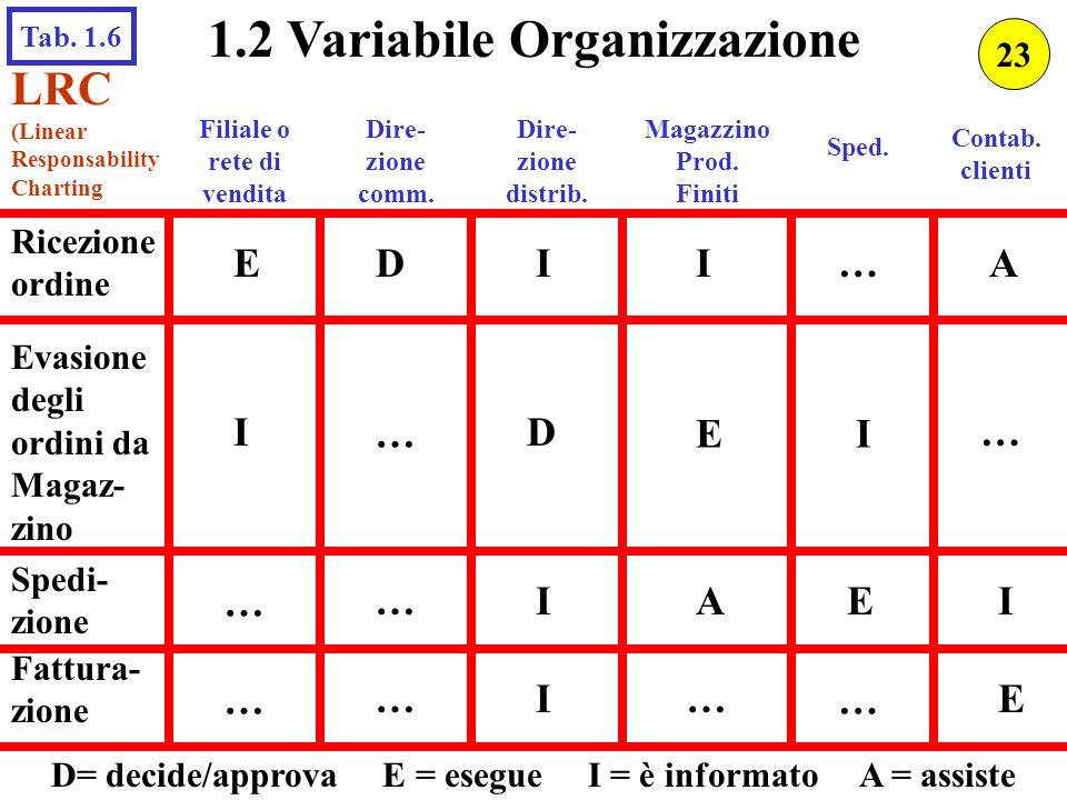 1.2 Variabile Organizzazione