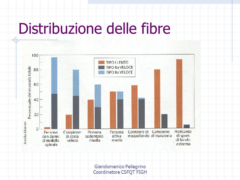Distribuzione delle fibre