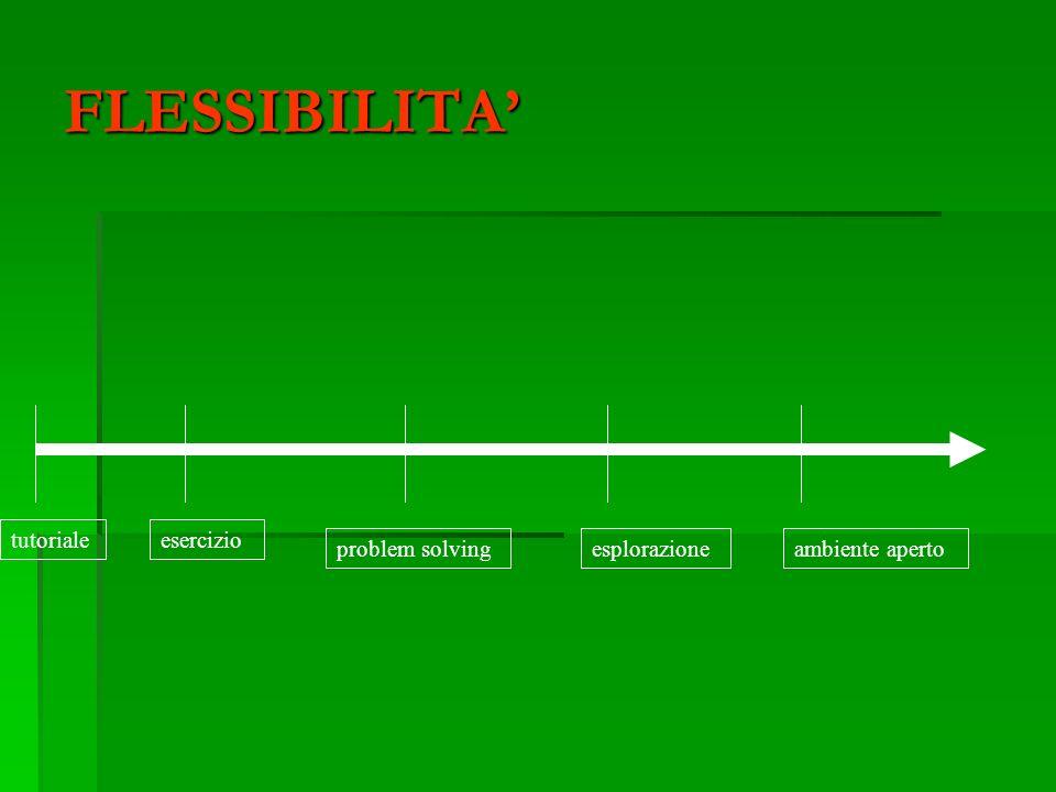 FLESSIBILITA' tutoriale esercizio problem solving esplorazione
