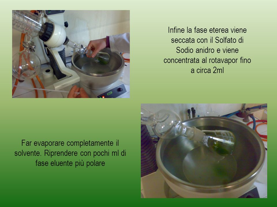 Infine la fase eterea viene seccata con il Solfato di Sodio anidro e viene concentrata al rotavapor fino a circa 2ml