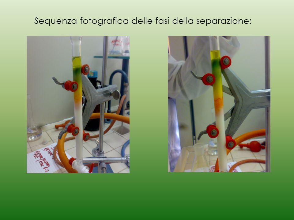 Sequenza fotografica delle fasi della separazione: