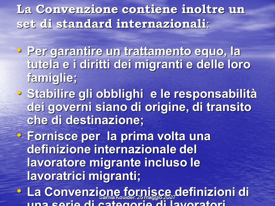 La Convenzione contiene inoltre un set di standard internazionali: