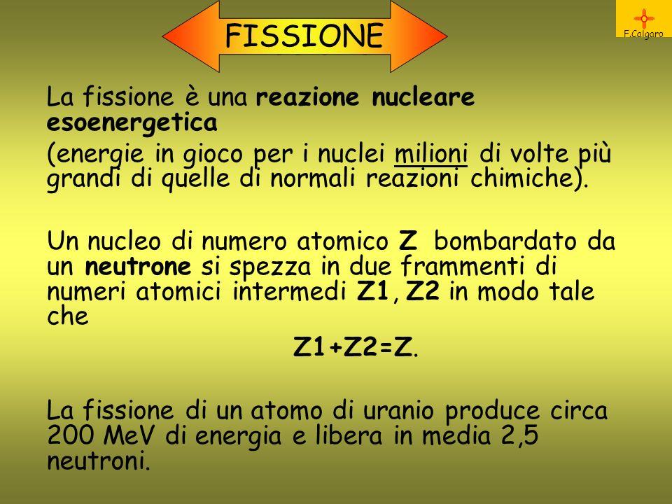 Fissione FISSIONE La fissione è una reazione nucleare esoenergetica