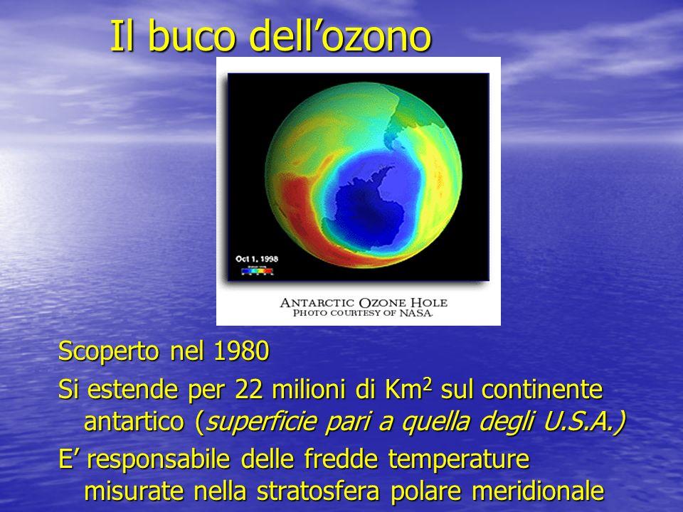 Il buco dell'ozono Scoperto nel 1980