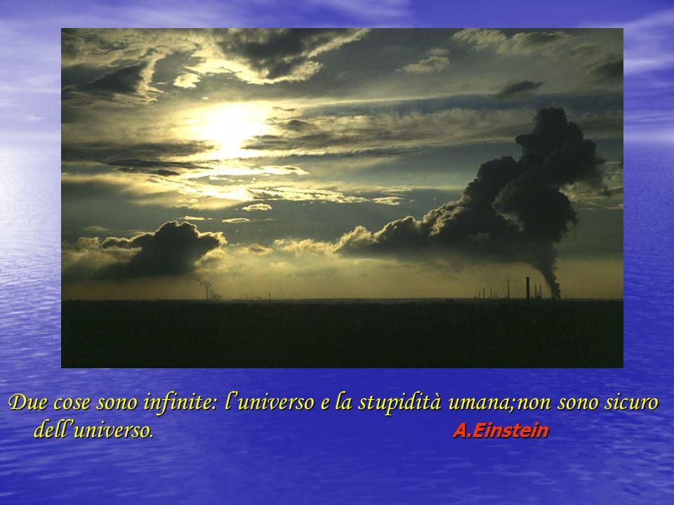 Due cose sono infinite: l'universo e la stupidità umana;non sono sicuro dell'universo. A.Einstein
