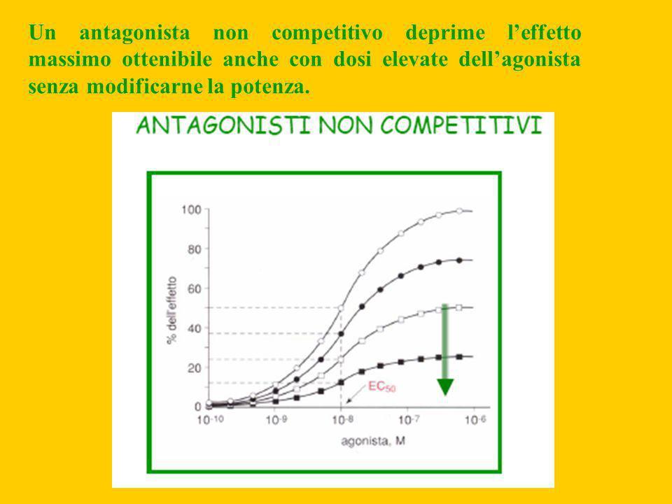 Un antagonista non competitivo deprime l'effetto massimo ottenibile anche con dosi elevate dell'agonista senza modificarne la potenza.