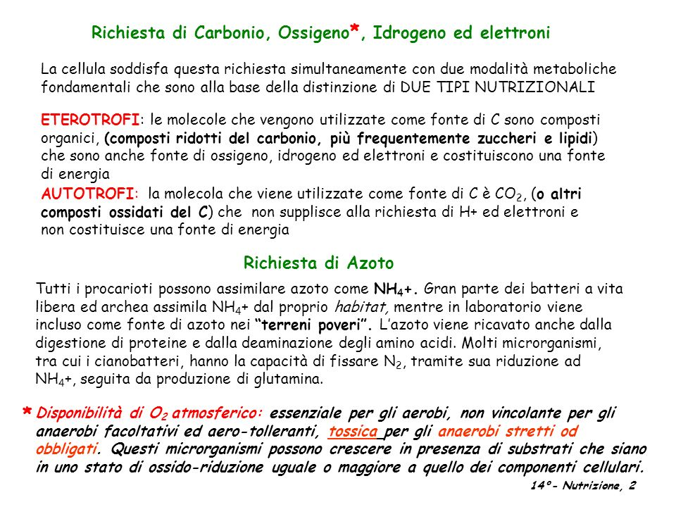 * Richiesta di Carbonio, Ossigeno*, Idrogeno ed elettroni