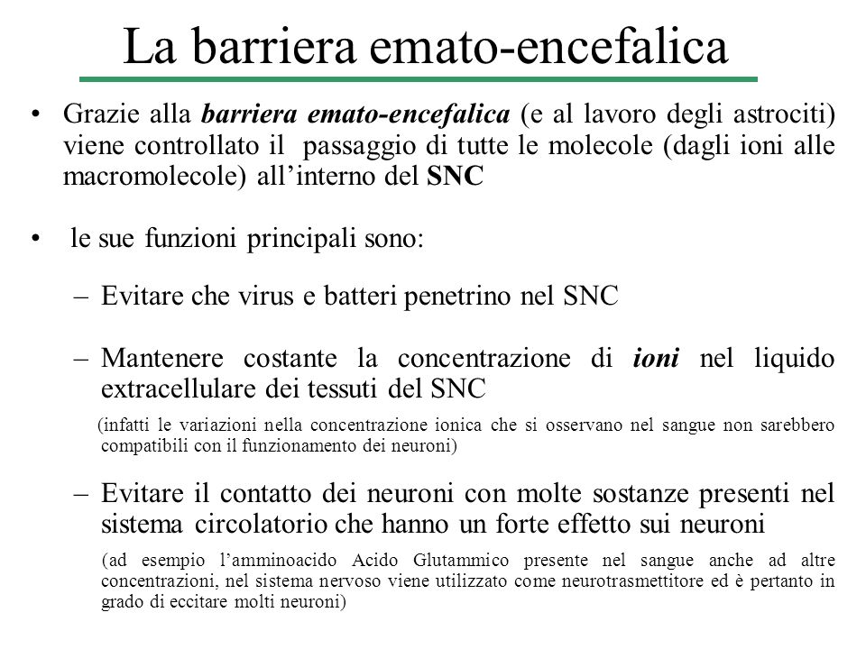 La barriera emato-encefalica
