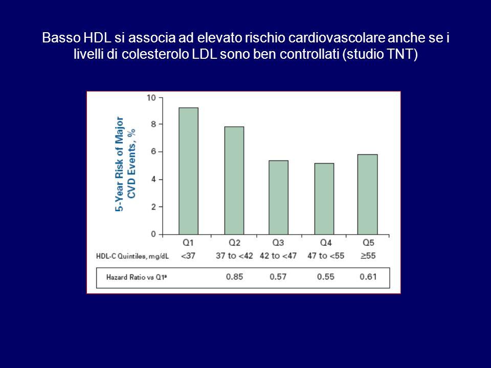 Basso HDL si associa ad elevato rischio cardiovascolare anche se i livelli di colesterolo LDL sono ben controllati (studio TNT)