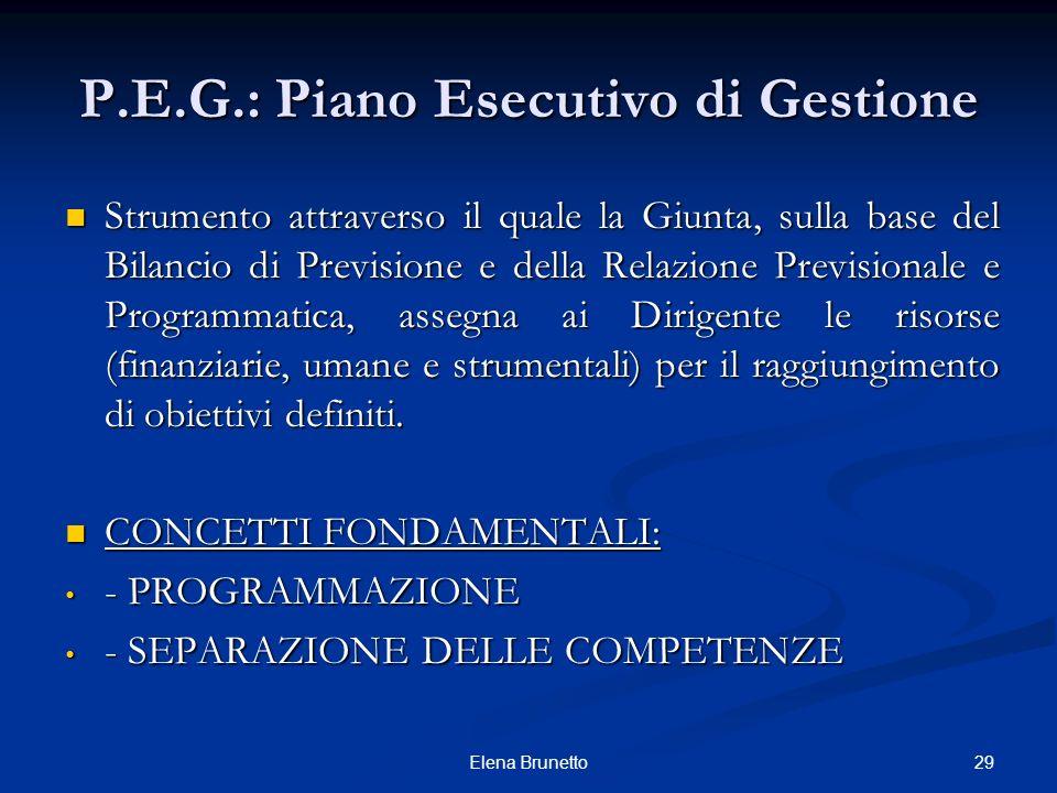 P.E.G.: Piano Esecutivo di Gestione