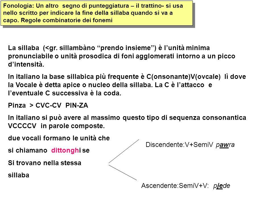 Pinza > CVC-CV PIN-ZA
