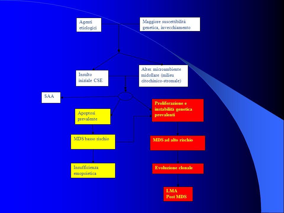 Agenti etiologici Maggiore suscettibilità genetica, invecchiamento. Insulto iniziale CSE. Apoptosi.