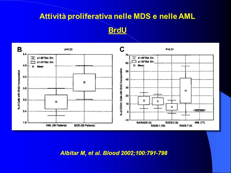Attività proliferativa nelle MDS e nelle AML BrdU