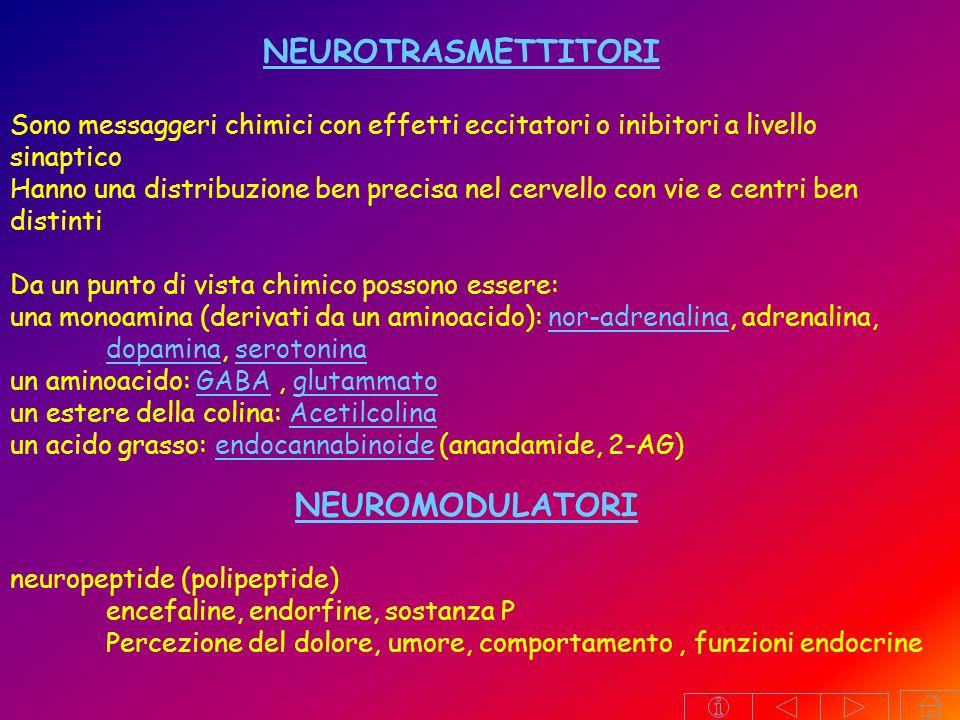 NEUROTRASMETTITORI NEUROMODULATORI