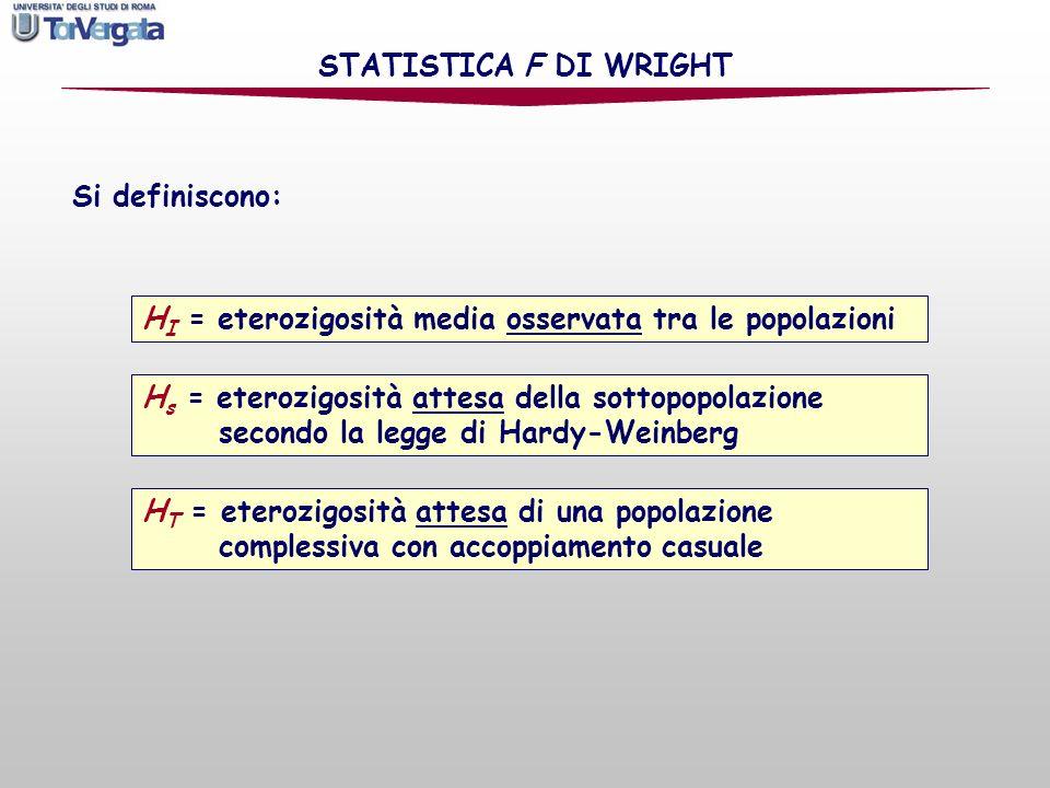 STATISTICA F DI WRIGHT Si definiscono: HI = eterozigosità media osservata tra le popolazioni.