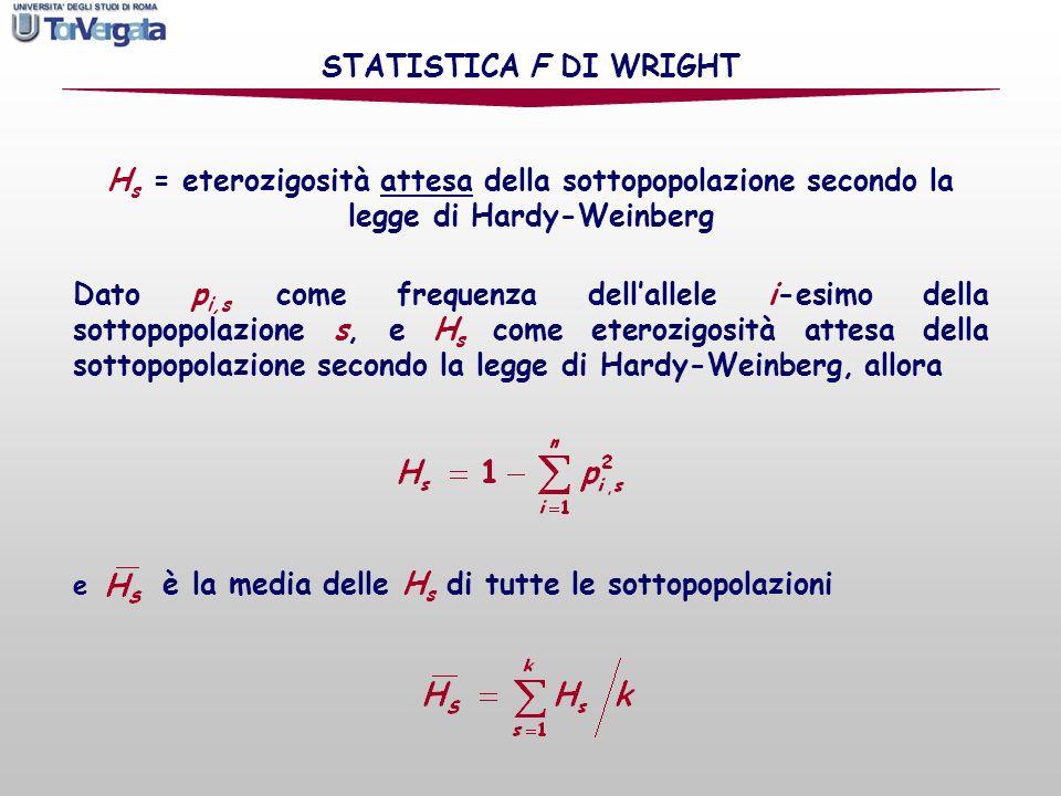 STATISTICA F DI WRIGHT Hs = eterozigosità attesa della sottopopolazione secondo la legge di Hardy-Weinberg.