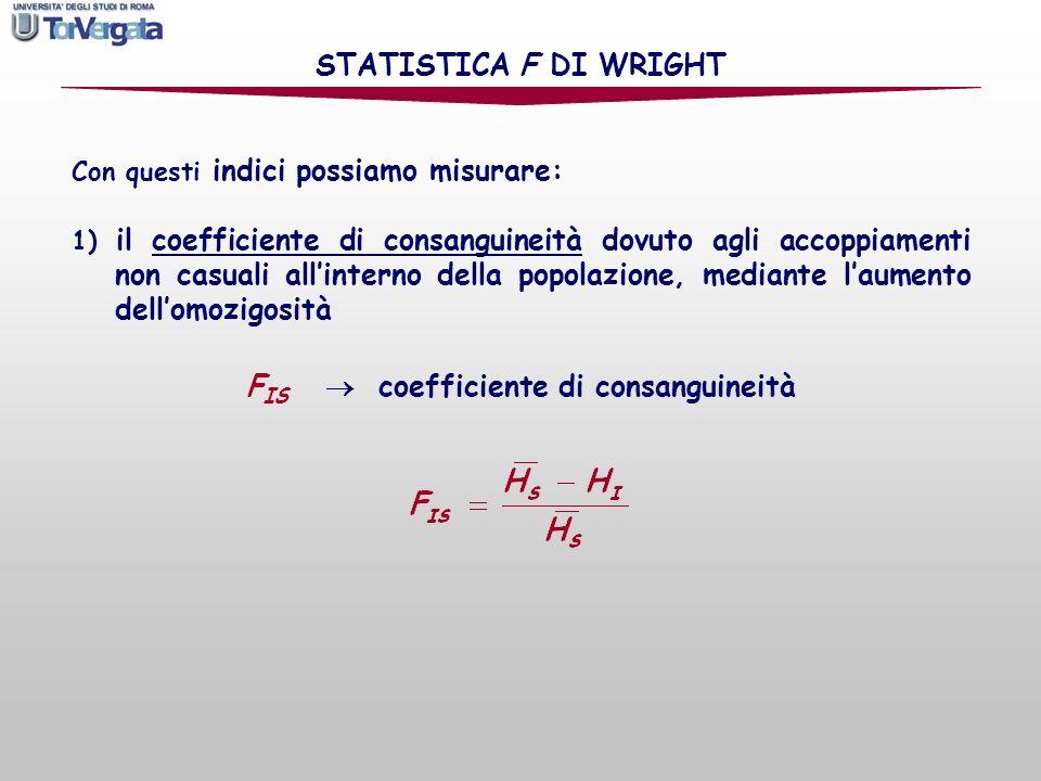 FIS  coefficiente di consanguineità