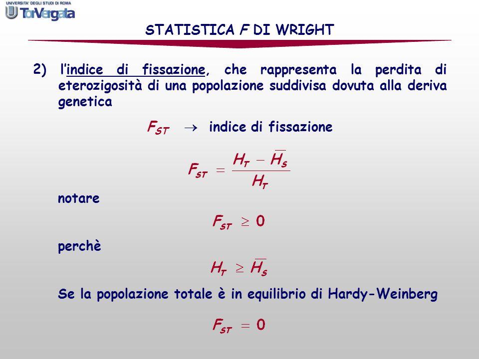 FST  indice di fissazione