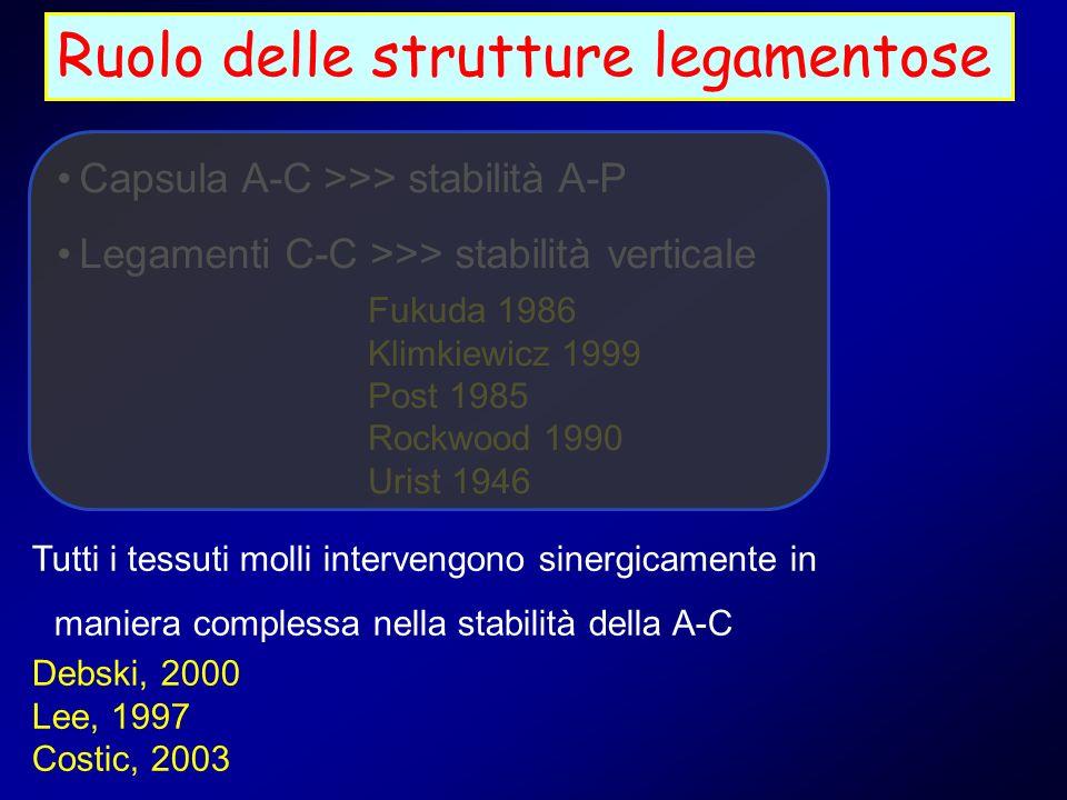 Ruolo delle strutture legamentose