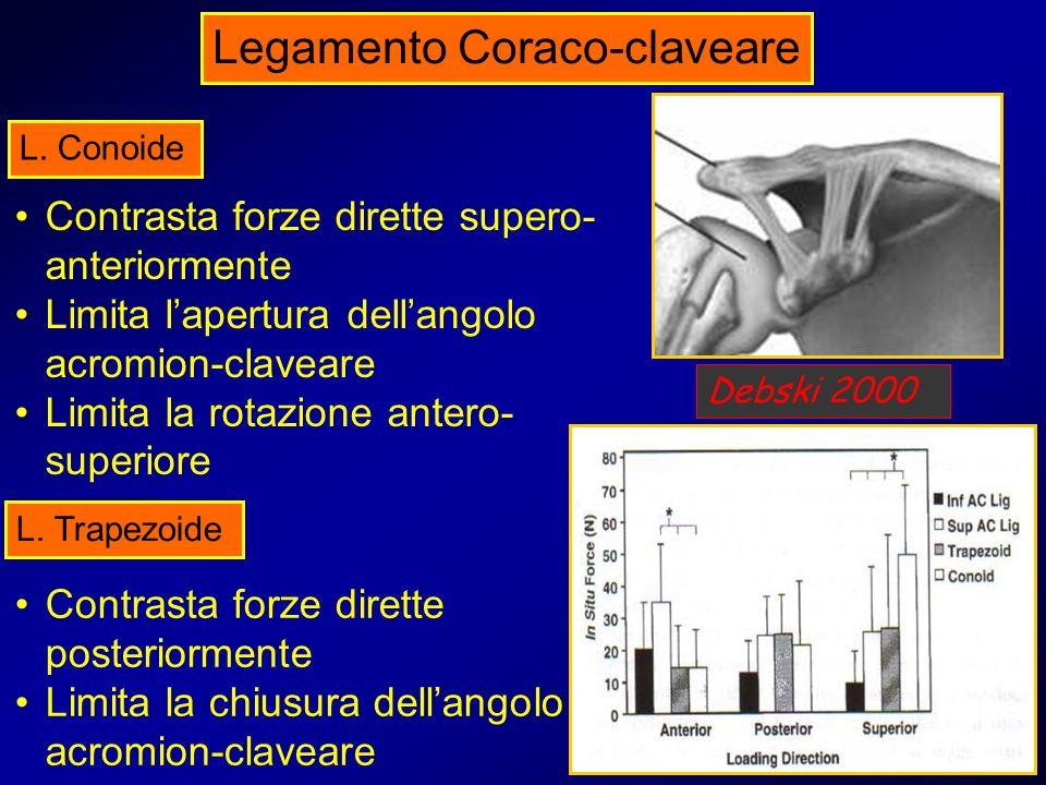 Legamento Coraco-claveare