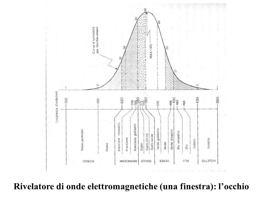 Rivelatore di onde elettromagnetiche (una finestra): l'occhio