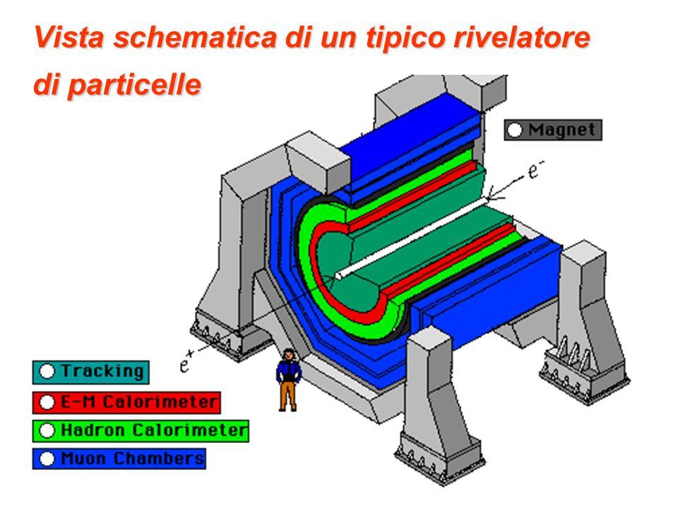 Vista schematica di un tipico rivelatore di particelle