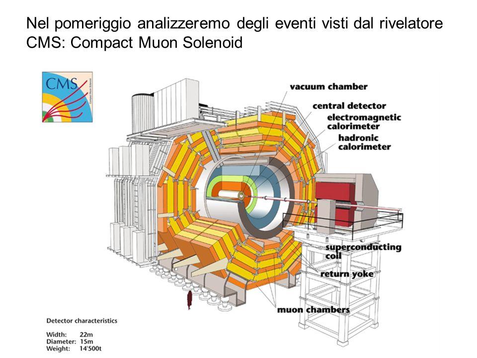Nel pomeriggio analizzeremo degli eventi visti dal rivelatore CMS: Compact Muon Solenoid