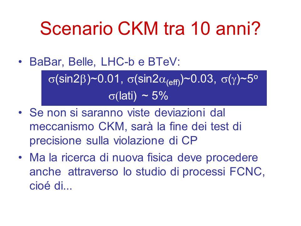 Scenario CKM tra 10 anni BaBar, Belle, LHC-b e BTeV: