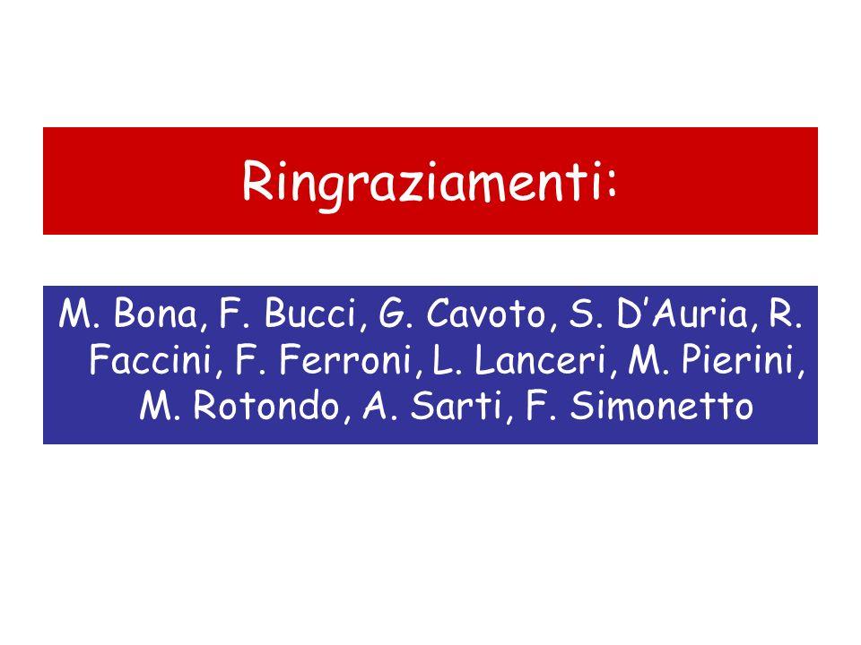 Ringraziamenti:M.Bona, F. Bucci, G. Cavoto, S. D'Auria, R.