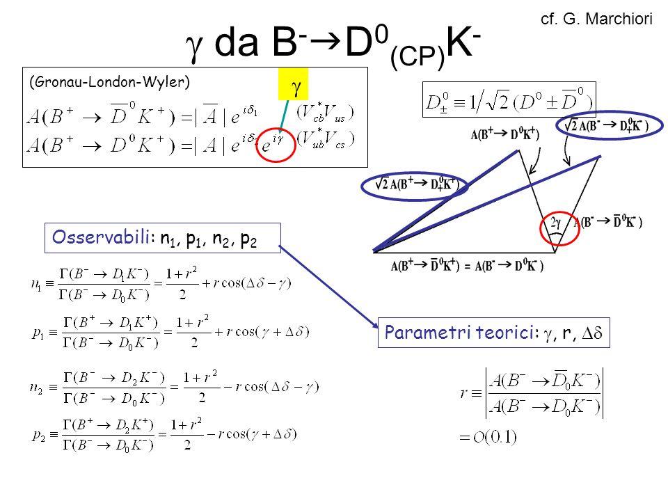  da B-gD0(CP)K- g Osservabili: n1, p1, n2, p2