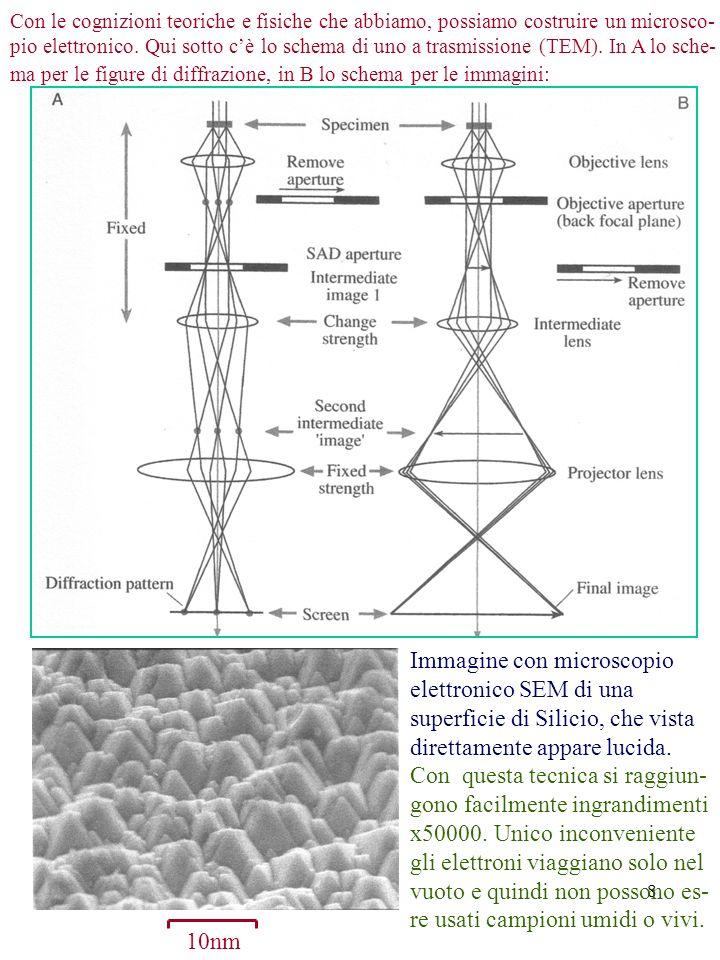 Immagine con microscopio elettronico SEM di una