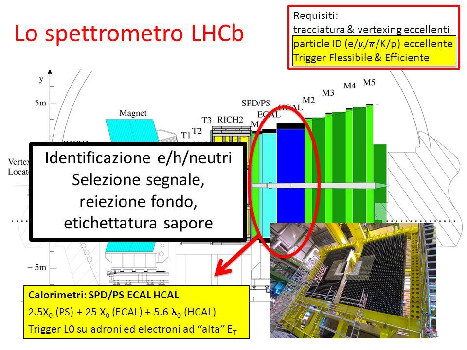 Lo spettrometro LHCb Identificazione e/h/neutri