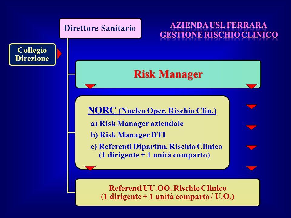 Risk Manager NORC (Nucleo Oper. Rischio Clin.) Direttore Sanitario