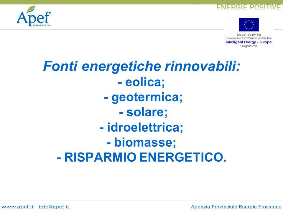 Fonti energetiche rinnovabili: - eolica; - geotermica; - solare; - idroelettrica; - biomasse; - RISPARMIO ENERGETICO.