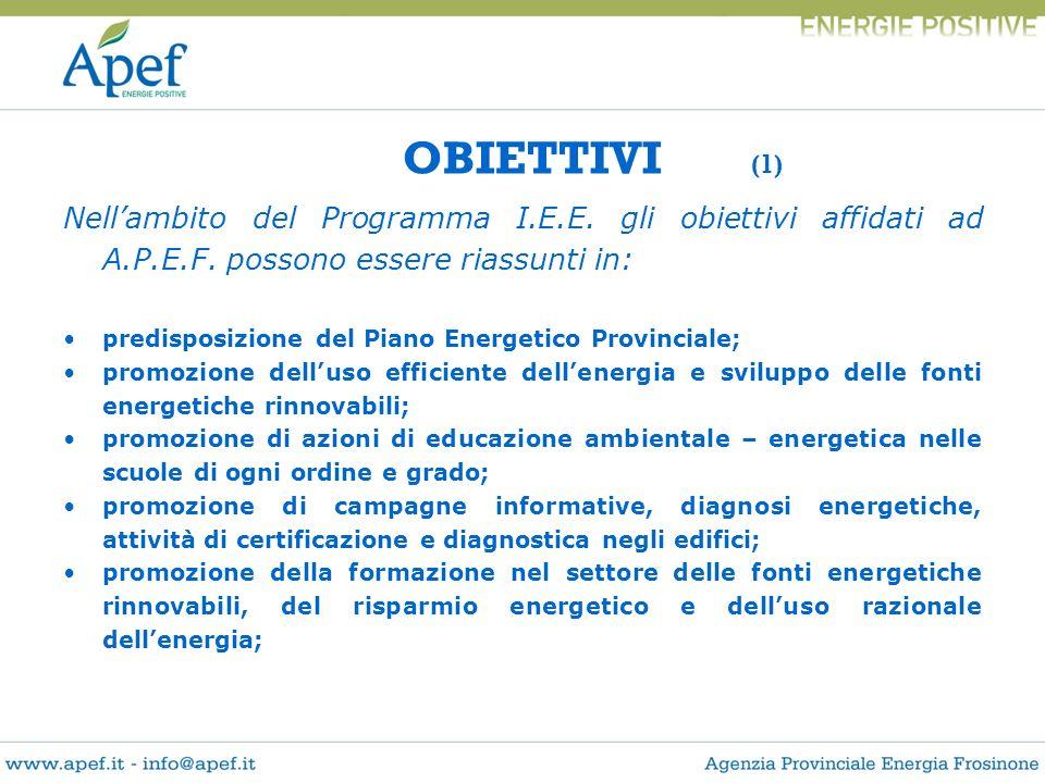 OBIETTIVI (1) Nell'ambito del Programma I.E.E. gli obiettivi affidati ad A.P.E.F. possono essere riassunti in: