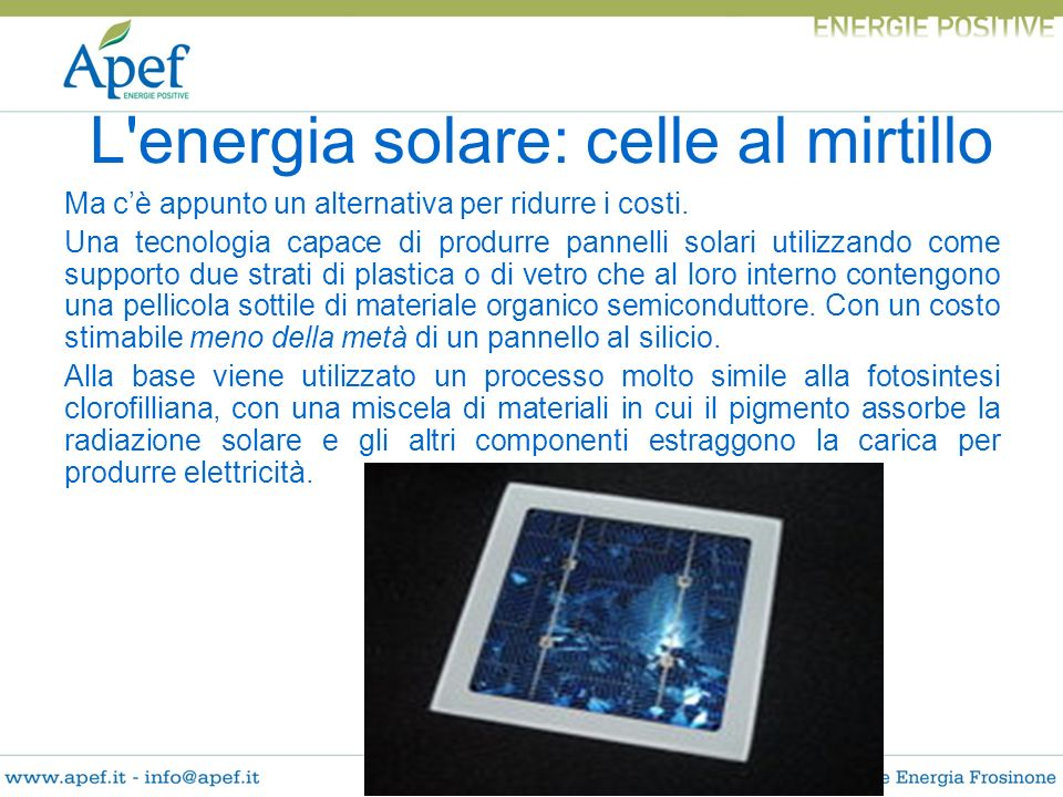 L energia solare: celle al mirtillo