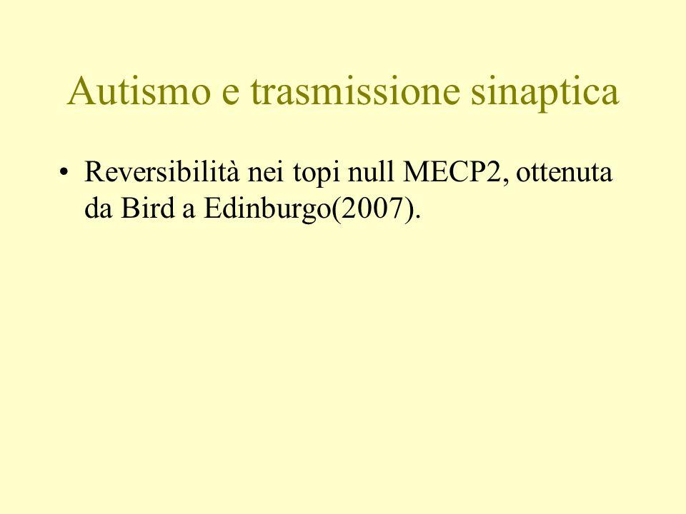 Autismo e trasmissione sinaptica