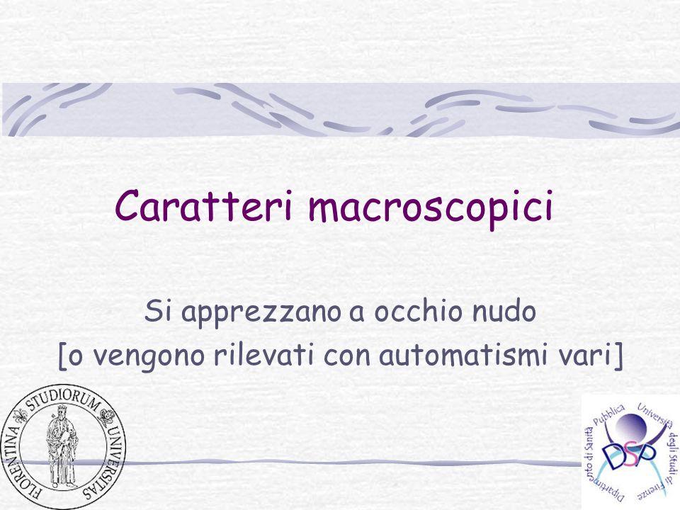 Caratteri macroscopici