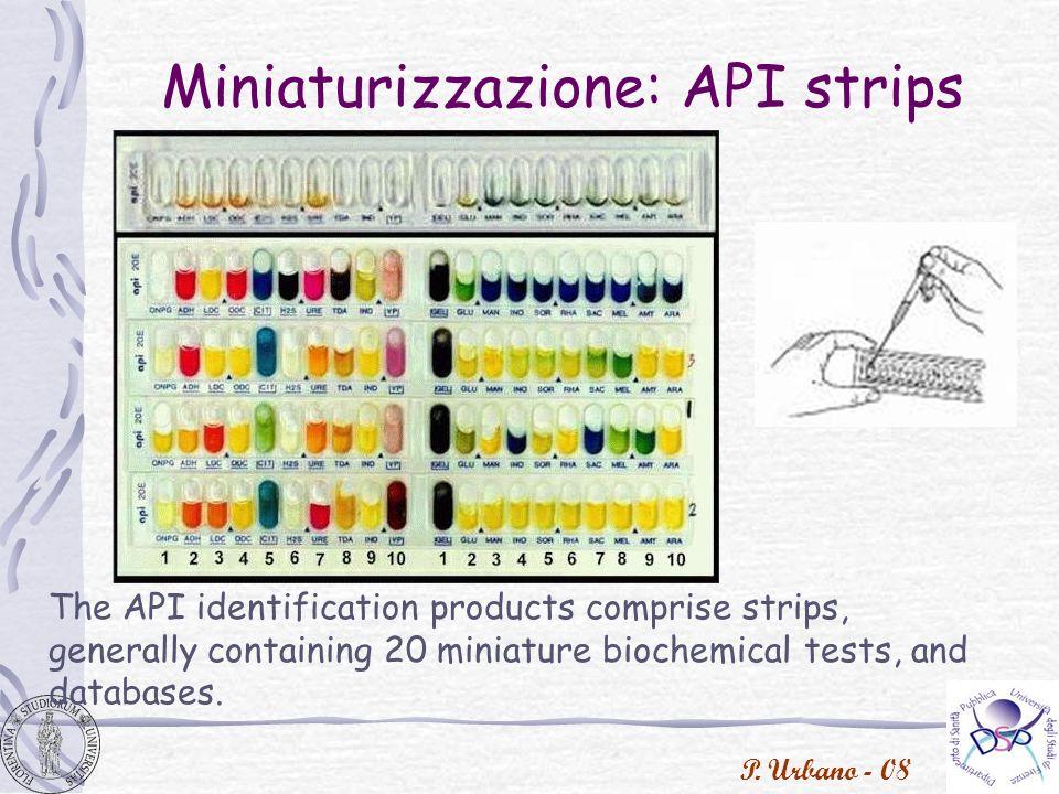 Miniaturizzazione: API strips