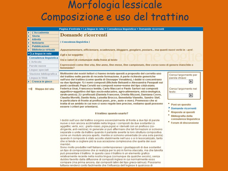 Morfologia lessicale Composizione e uso del trattino