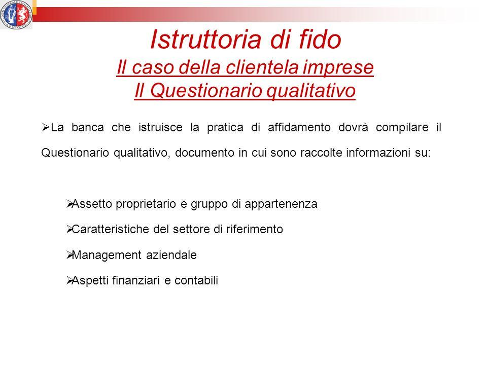 Istruttoria di fido Il caso della clientela imprese Il Questionario qualitativo