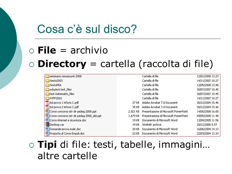 Cosa c'è sul disco File = archivio