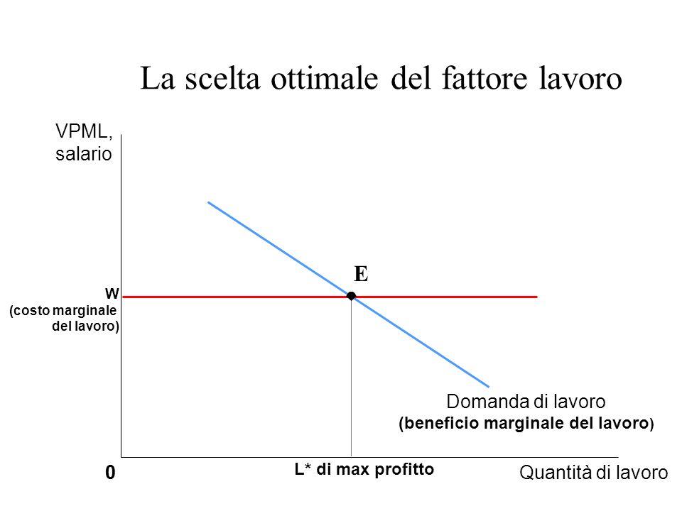 La scelta ottimale del fattore lavoro