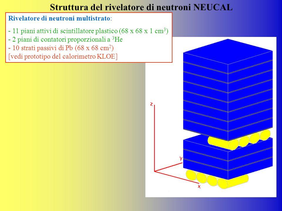 Struttura del rivelatore di neutroni NEUCAL
