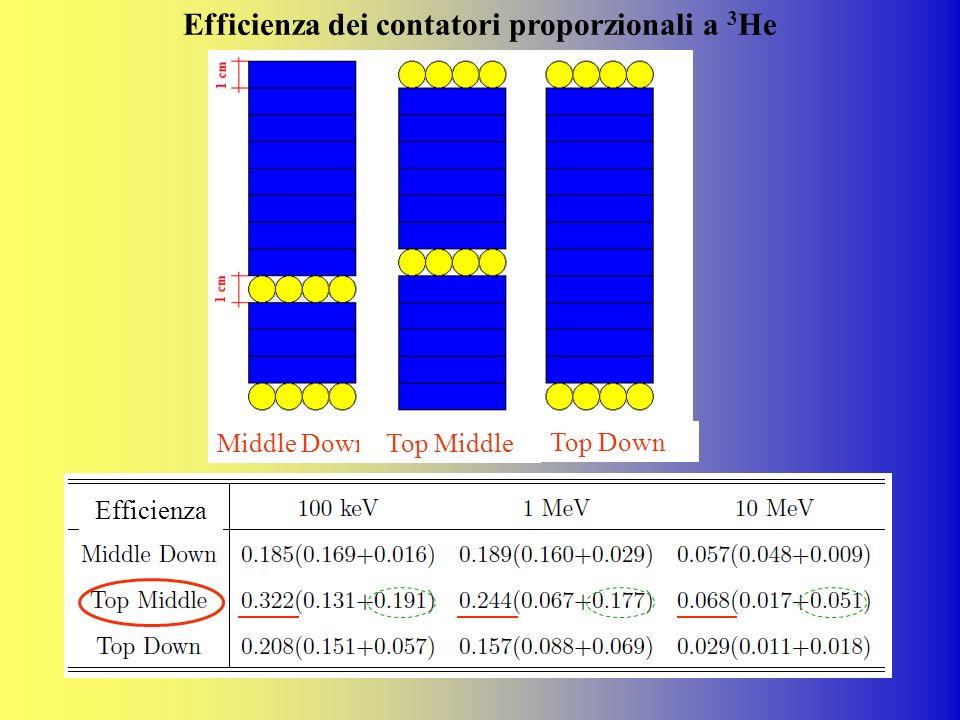 Efficienza dei contatori proporzionali a 3He